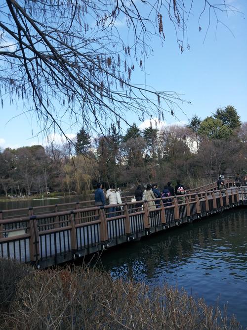 井の頭公園1