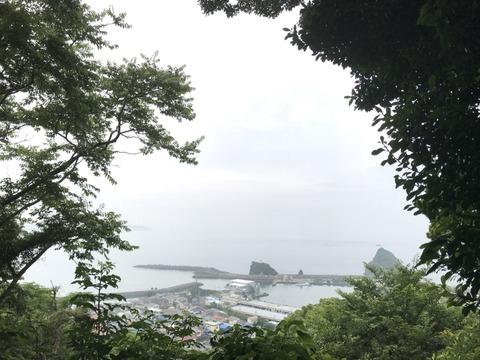 魚見塚そうじ_18