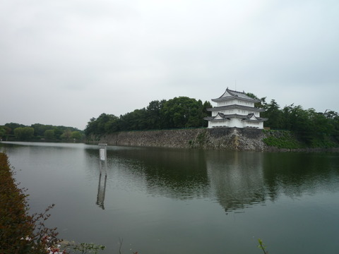 朝の散歩 初夏篇