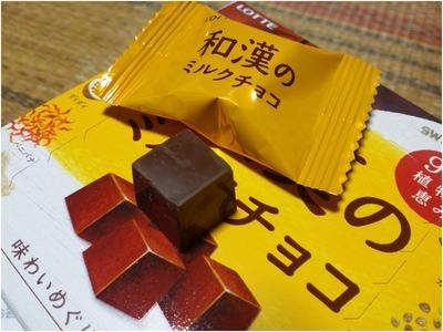 和漢のミルクチョコ (6)