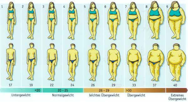 BMI別体形