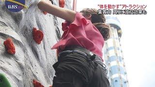 【動画】ボルダリングで須黒清華アナのお尻に食い込むパン線www