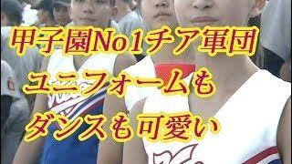 【画像】甲子園の歴史に残る美人揃いの慶応チアガール!キレキレの踊りも話題に!