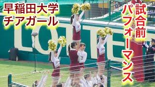 【動画】キレッキレのパフォーマンス!早稲田大学チアガール