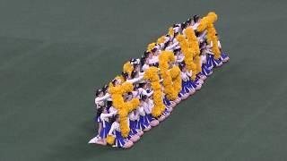 【動画】ナゴヤドームで中京大中京高校チアリーディング部SPIRITS