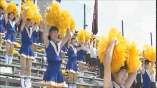 【動画】熱闘甲子園 高校野球 チアガール
