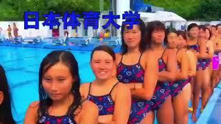 【動画】インカレ水泳2018 シードウルトラ