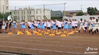 【動画】TikTok 夏のチアガールが可愛い