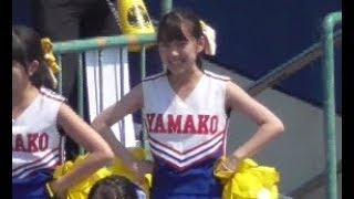 【動画】天使のインテリチアガール 2018高校野球応援 甲子園予選