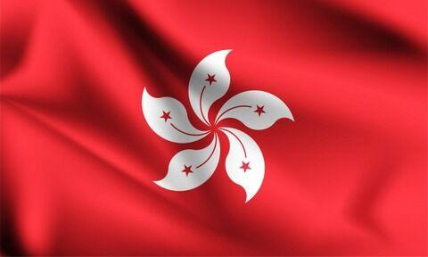 【悲報】香港独立の旗を所持していた男性、いきなり逮捕される