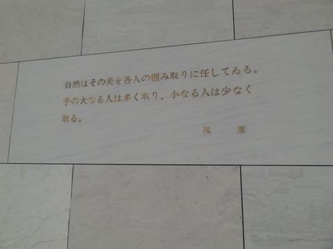 DSC01882