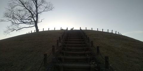 風土記の丘1