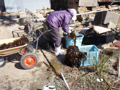 P2210372老漁師