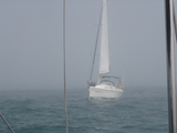 P8080251濃霧ロココ