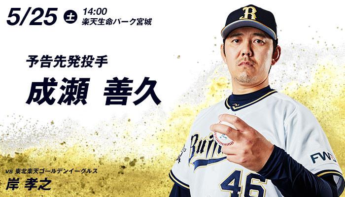 pitcher_0525