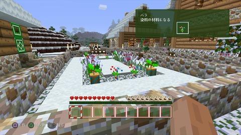 Minecraft_ PlayStation®4 Edition_20141225233141_R