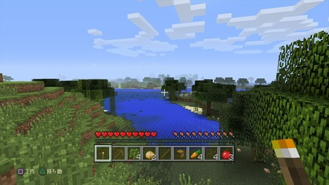 Minecraft_ PlayStation®4 Edition_20141225213926_R