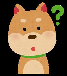 dog3_1_question (2)