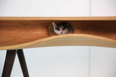 IT情報つめこみ速報|猫机6Modern-table-for-cats-6