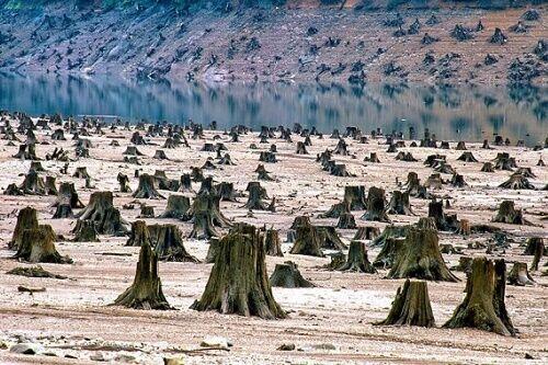 人類文明は20年~40年以内に崩壊への帰還不能点を迎える可能性がある