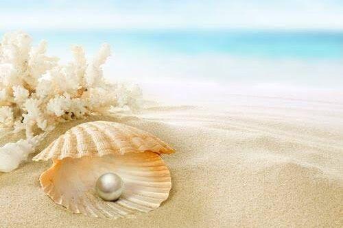 ペットが真珠になって戻ってくる…遺骨を核に真珠を作る真珠葬