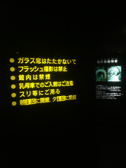 0407_19