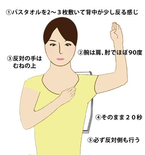 katakori_sashie