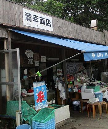 加太で山盛りの釜あげしらす丼といえば・・・「満幸商店」
