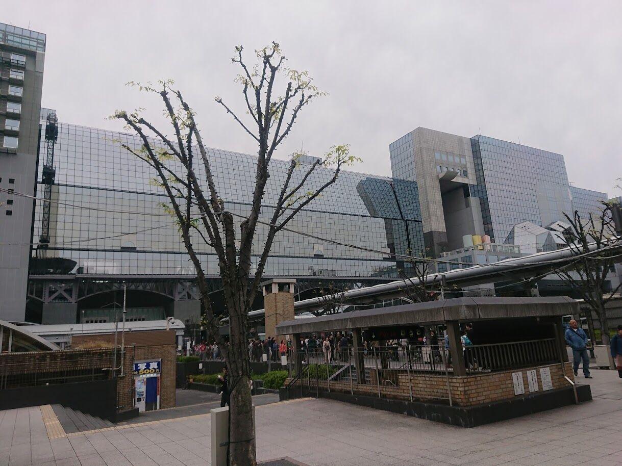 京都駅のミスドでしか買えないシフォンケーキ