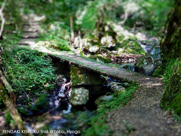 tendaki_trail_image