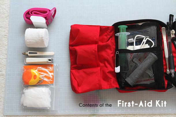 赤色のファーストエイドキットバッグが開かれて、中身が並べられている写真。