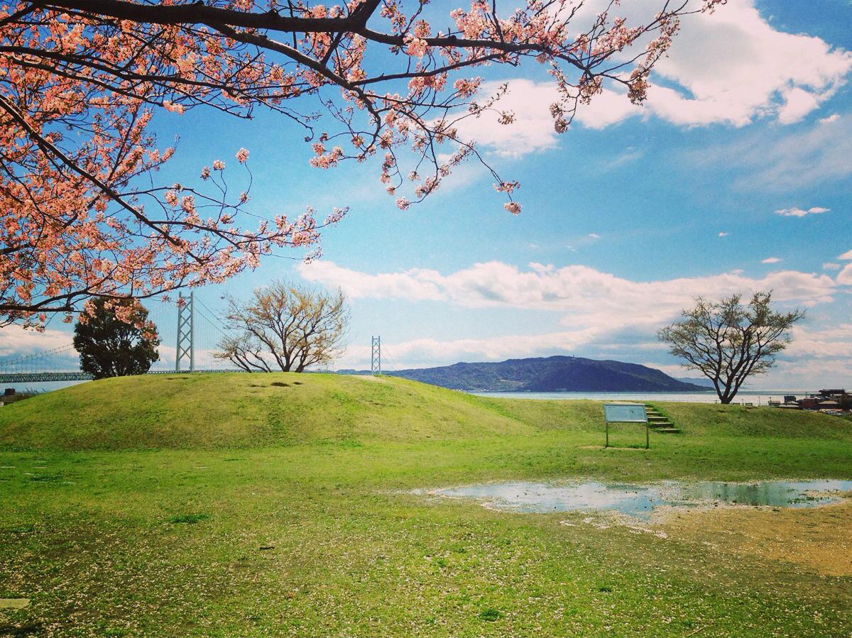 今年も 桜の花が咲く風景 を見 ...