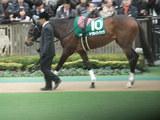 2010_0207daiyamon0308
