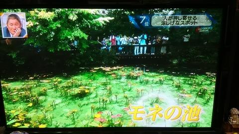 モネの池⑩