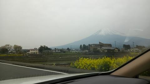 ⑩故郷の富士山