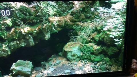 テレビ富士山⑨