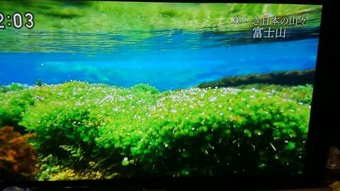 テレビ富士山⑬