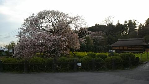 29年4月18日富士山④