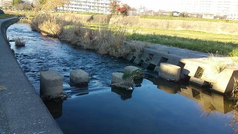 川を渡る⑪