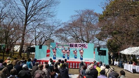 29年古戦場桜まつり⑨
