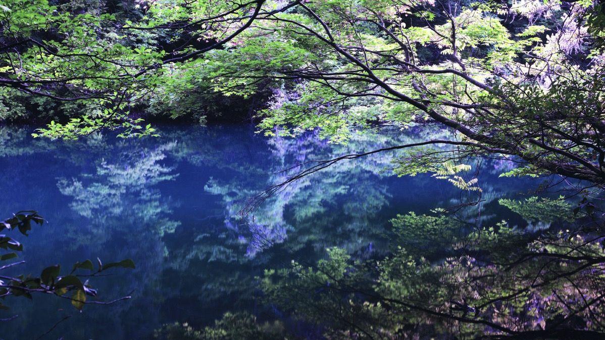 Ishikawa 1