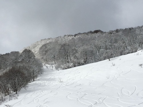 Oku.Man ski・board training
