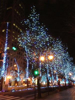 写真 2013-01-17 21 38 25