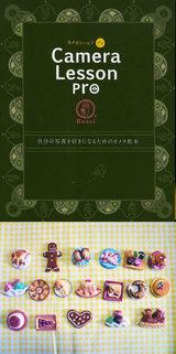 4f981f1f.jpg