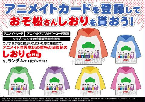 171012-1105_matsu_shiorihaihu_fair_KA