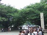 名古屋城正門