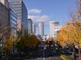 名古屋・桜通り2012.12.06