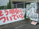 猫な100円看板