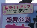 鶴舞公園ライトアップ