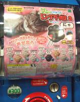 にゃウンド肉球2